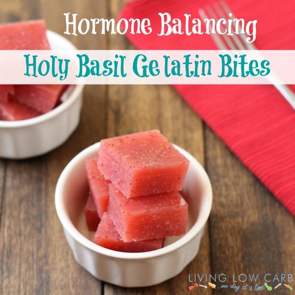Hormone Balancing Holy Basil Gelatin Bites