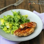 paleo grilled chicken teriyaki_1325_600f