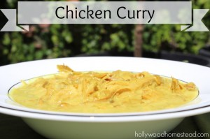Paleo Chicken Curry a Guest Post by Hollywood Homestead