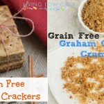 Grain Free Graham Crackers and Crumbs