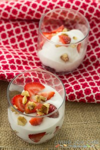 Five Ingredient Friday: Paleo Dairy Free Yogurt