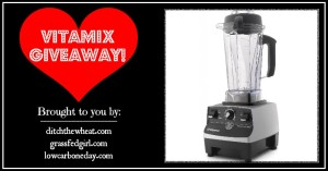 WINNER:  Vitamix Professional Series Blender–$600 value