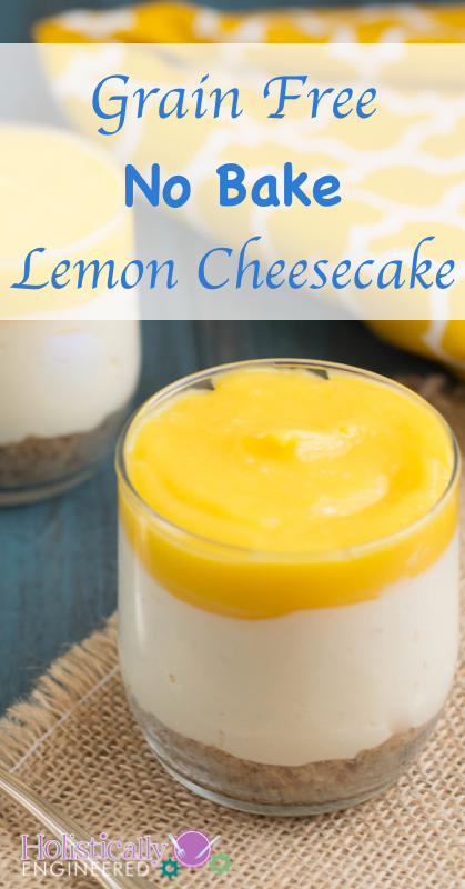 Grain Free No Bake Lemon Cheesecake | holisticallyengineered.com #grainfree #glutenfree #primal #lowcarb