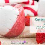 Paleo Coconut Cream and Strawberry Gelatin__Dairy Free