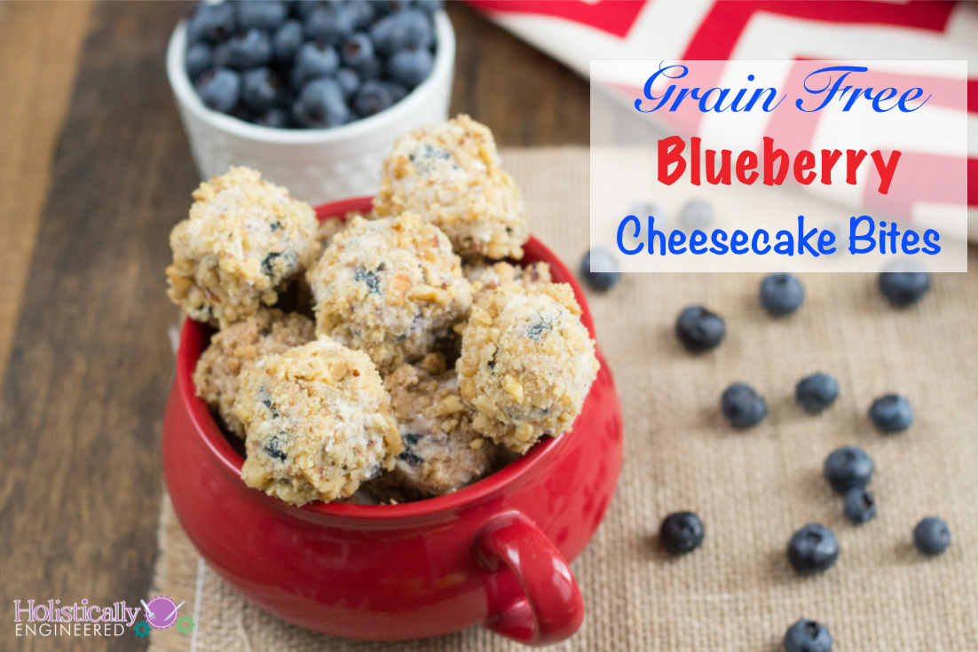 Grain Free No Bake Blueberry Cheesecake Bites - Holistically ...