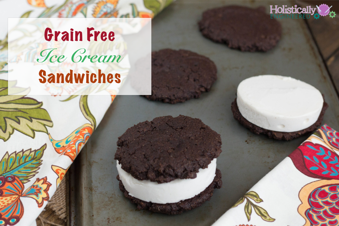 Paleo Ice Cream Sandwiches