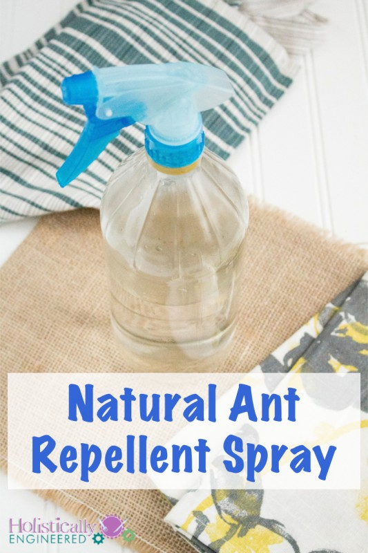 Natural Ant Repellent Spray #DIY #essential oils