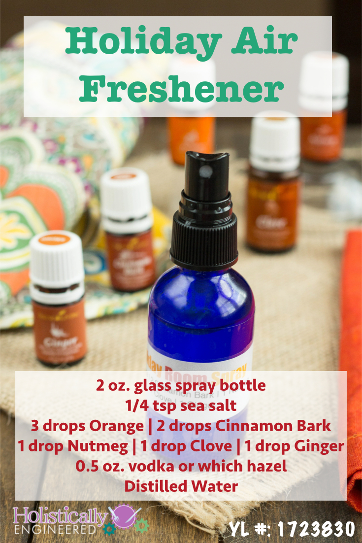 Holiday air freshener holistically engineered - Living room air fresheners ...
