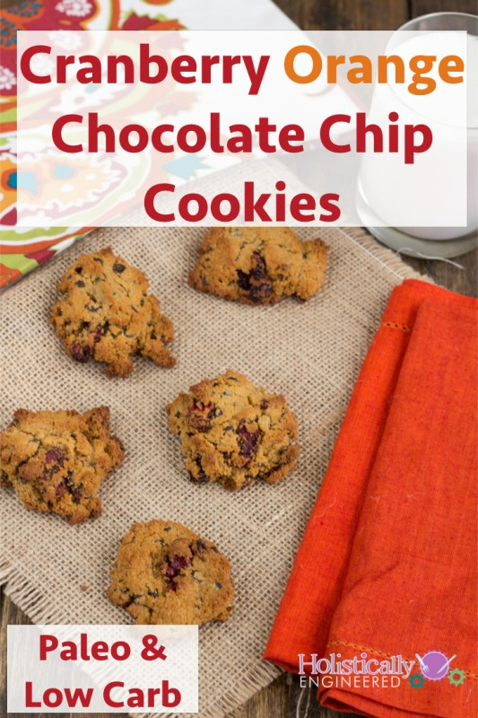 Low Carb Cranberry Orange Chocolate Chip Cookies | Holistically Engineered