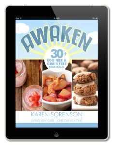Awaken Egg Free Grain Free Breakfasts