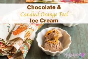 Chocolate and Candied Orange Peel Ice Cream